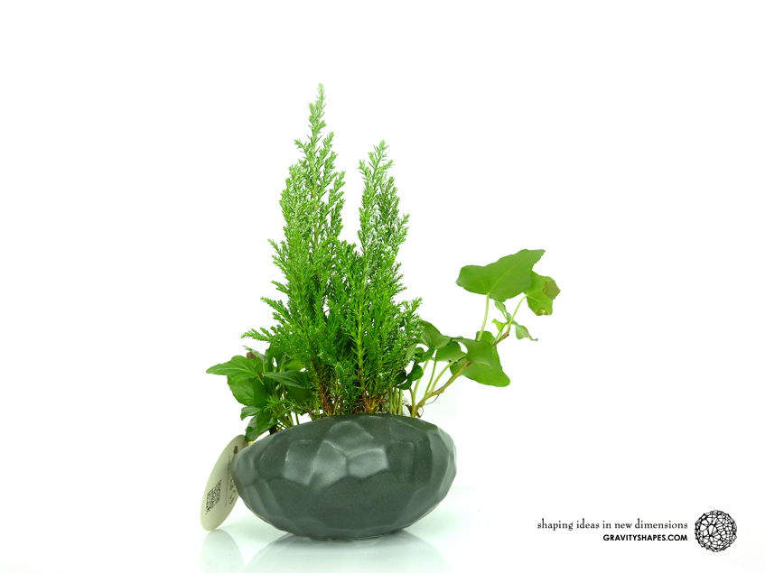 Flat organic plant pot in Water-Look