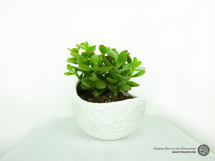 Porcelain plant pot #4 (size XL, Gloss White)