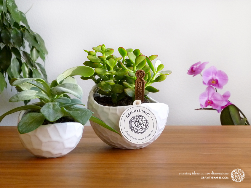 Porcelain plant pots #12 small round and #4 XL (Gloss White)