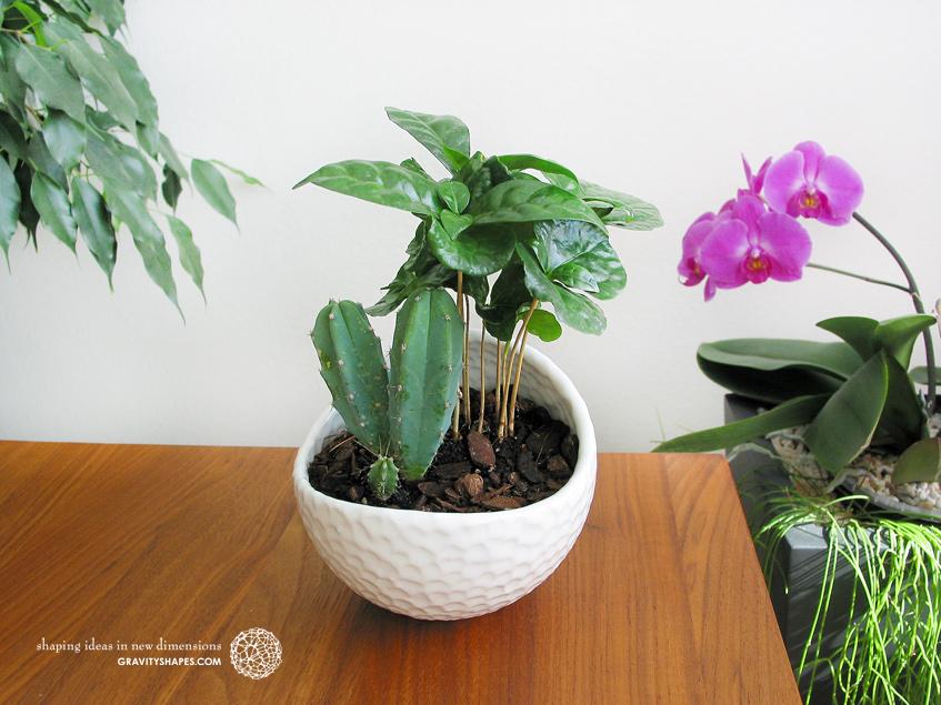 Porzellan Pflanzentöpfe im Golfball-Look (rund – Gr. XL)