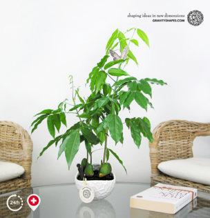 Porzellan Pflanzentopf im Wasser-Look #12 (rund – XL, weiss, bepflanzt)